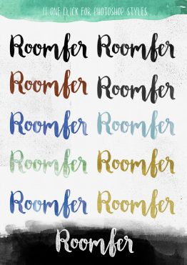 roomfer brush actions