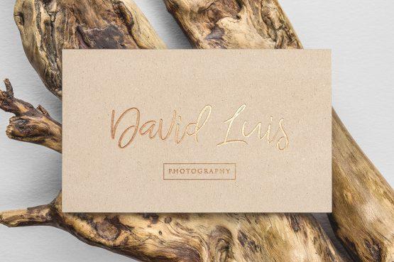 David Luis Photography