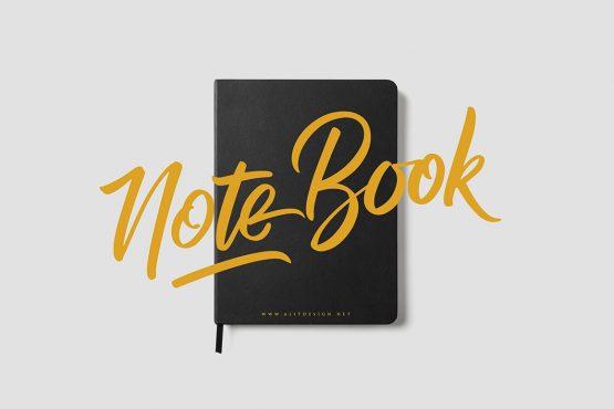 RaphLanok Note Book