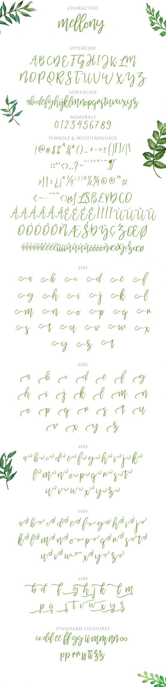 mellony brush script font