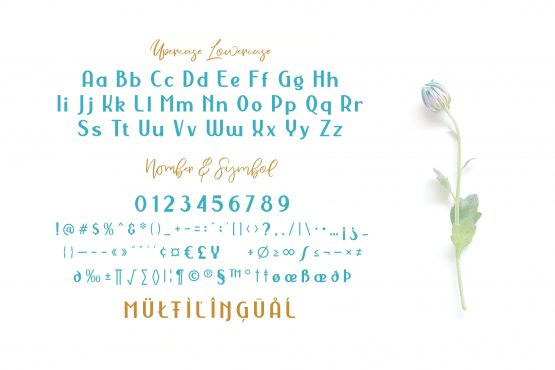 NERMOLA Scripcy Font